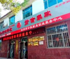 沧州市紫信家政服务总店